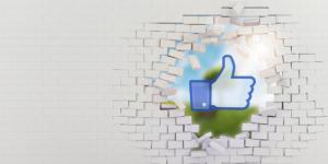 img-facebook-beyondthelike